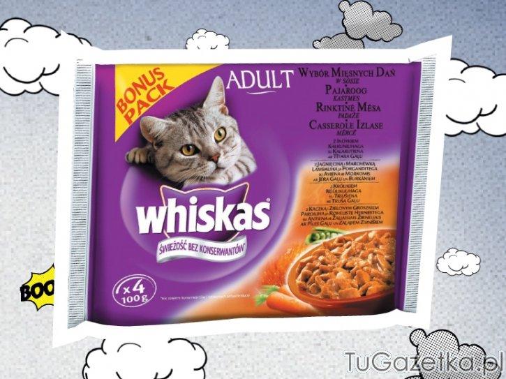 Whiskas Karma Pasza Dla Kota Lidl, Zwierzęta Domowe, Koty